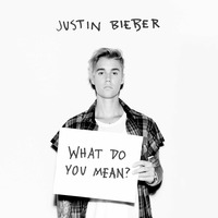 What Do You Mean? (Cd Single)
